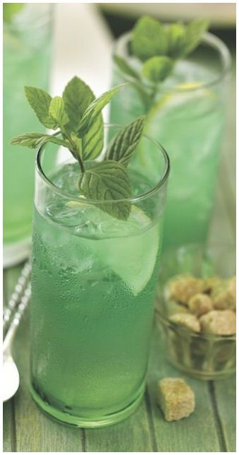Mint Iced Green Tea
