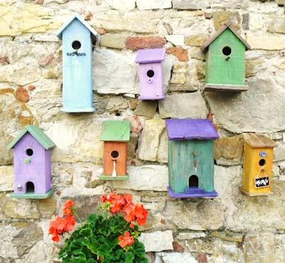 Little bird house