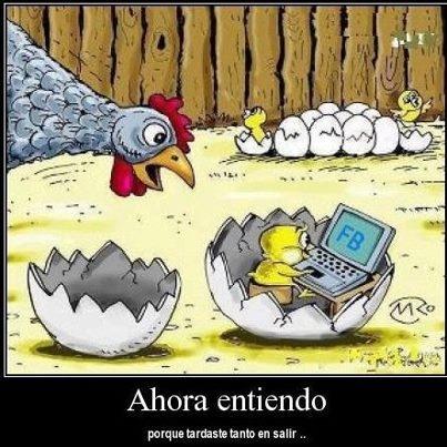 """AHORA ENTIENDO ---I now understand """"ahora entiendo"""" from Spanish"""