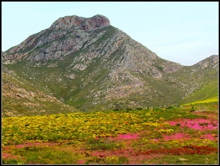 Outeniqua Mountain Pass, South Africa, Garden Route Tour.
