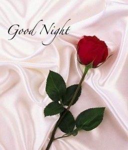 Good night and sleep well my Love❤️❤️❤️                                                                                                                                                                                 More