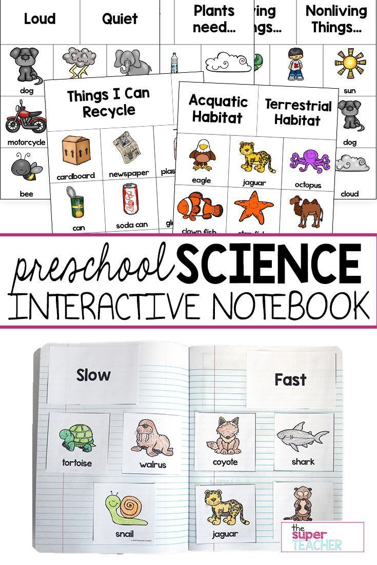 This Preschool Science Interactive Notebook Is Perfect For Kindergarten Or Preschoo Preschool Science Activities Preschool Science Interactive Science Notebook