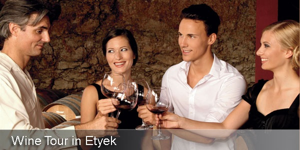 Wine Tour with dinner  from Budapest to Etyek village west of the city.
