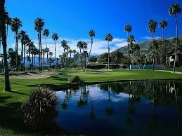 Palm trees for me is a must on a golf course, gives you such a calming feeling on the golf course.