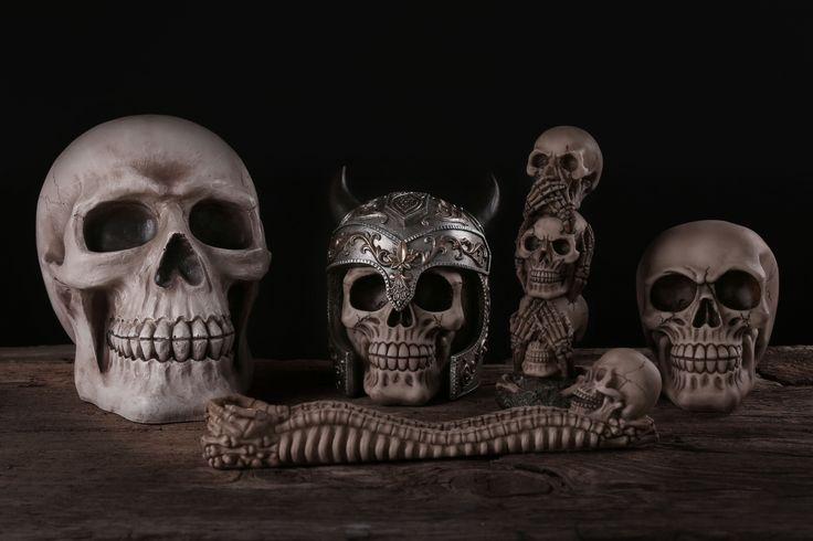 Dekorativní lebky s různými motivy #lebka #dekorace #skull #decor #giftideas
