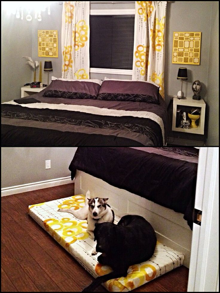 I 39 m not much for the yellow and grey but i love the dog for Master bedroom with crib ideas