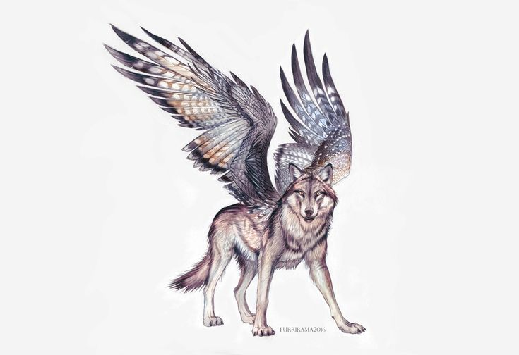 Falcon Wolf (closed) by Furrirama.deviantart.com on @DeviantArt
