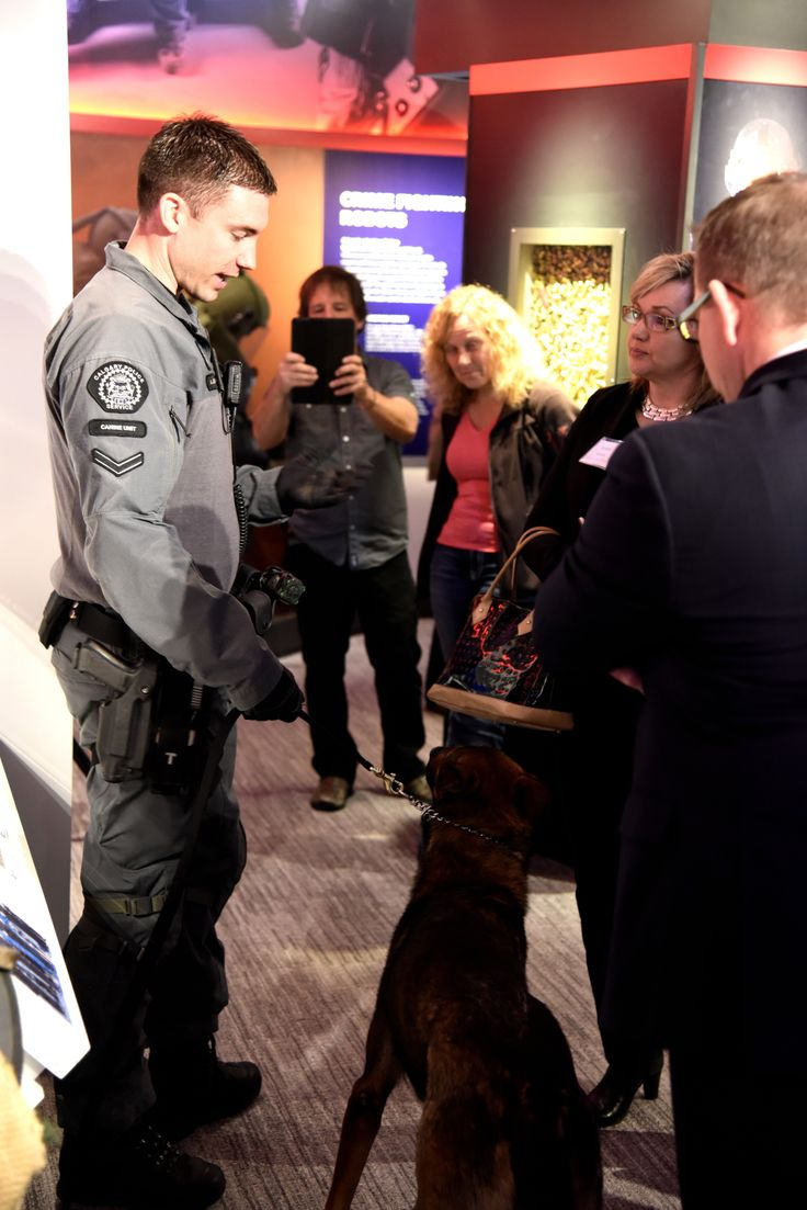 Even a dog wanted to come to the Grand Opening! This is one of our special dogs from the CPS K-9 unit.