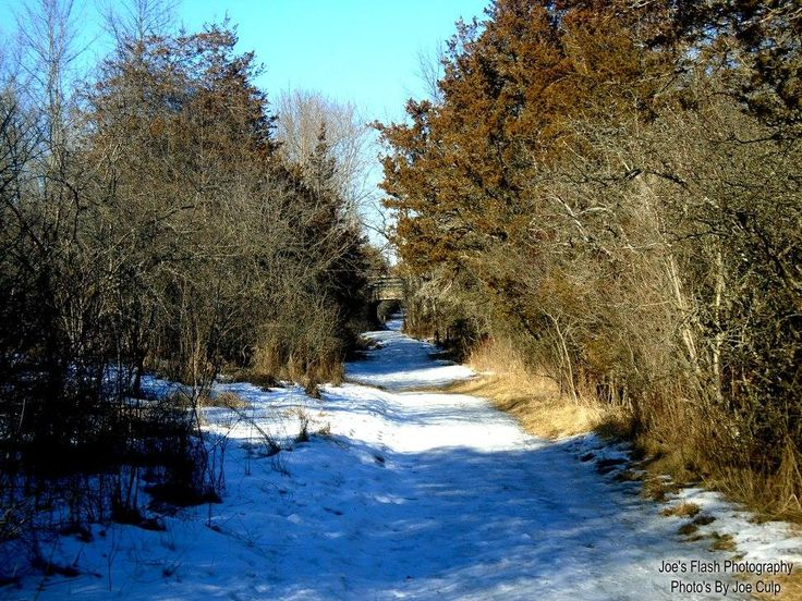 Winter walking at potters Creek Conservation