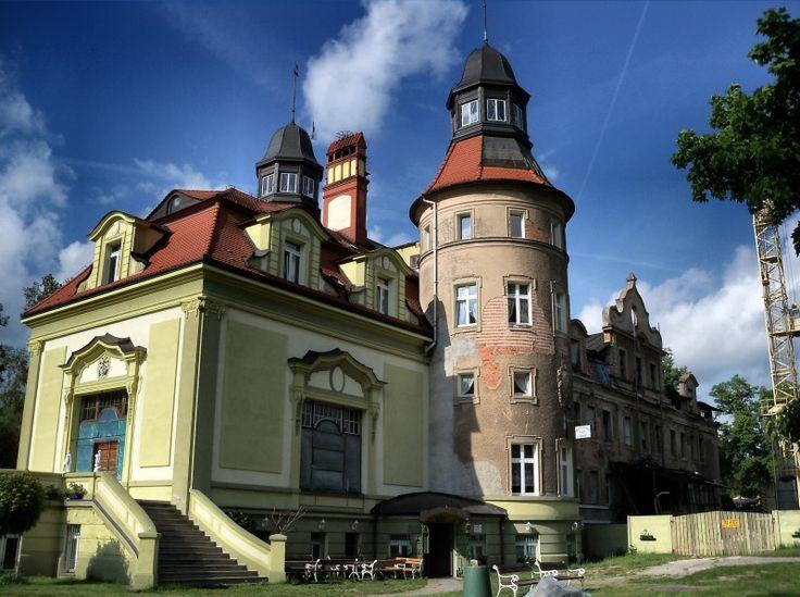 Pałac w Jędrzychowicach