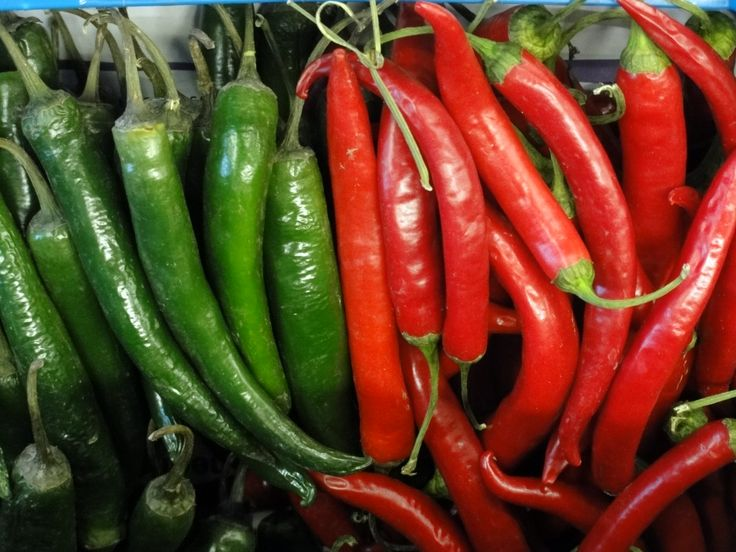 Easy to grow chillies | top 5 easy to grow veg