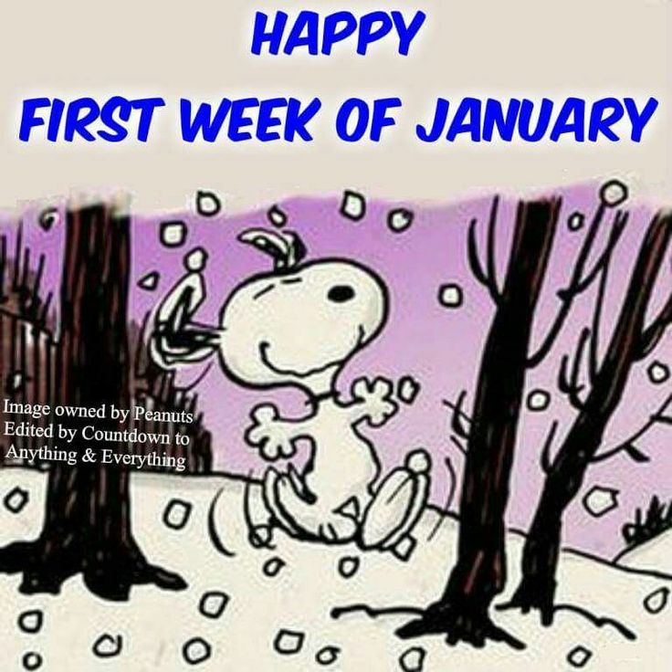 Happy first week of January