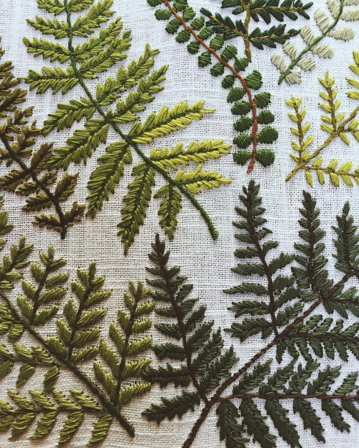 Embroidered ferns by tessa_perlow.  green, stiching, illustration, nature, leaves