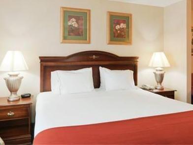 Holiday Inn Express Hotel & Suites Auburn - University Area Auburn (AL), United States