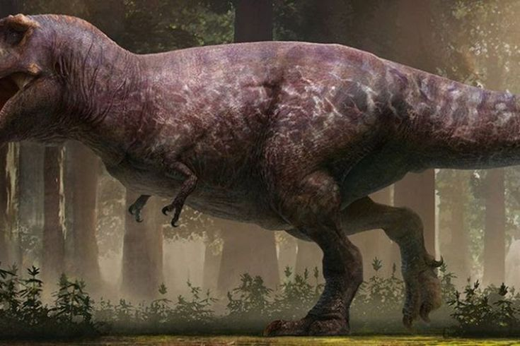 Paling Keren 26 Cara Gambar Dinosaurus T Rex Loch Ness Ular Dragon Ayo Dukung Chanel Ini Dengan Klik Subscribe Dan Like Cara Menggambar Dinosaurus Gambar