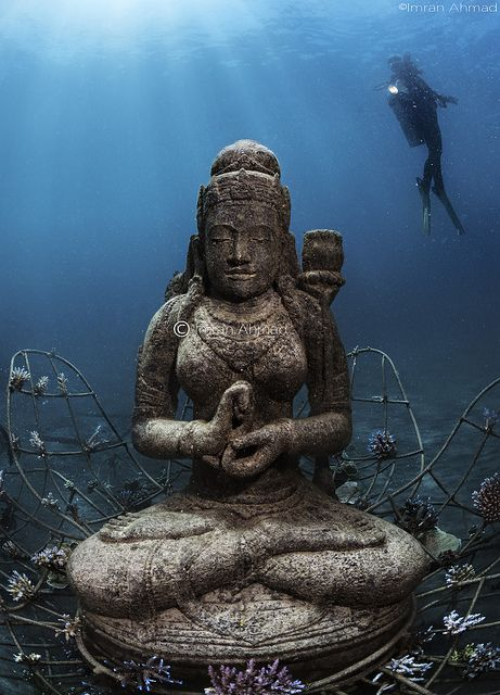 Temple garden at the Biorock structures pemuteran bali...this is amazing, underwater statues placed there to give the coral & marine life new homes! #mike1242
