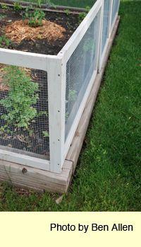 Rabbit Fencing. Gardening ...
