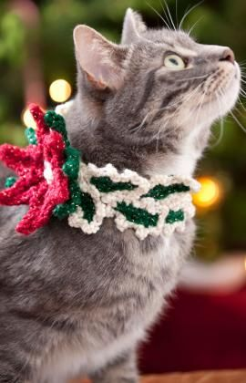 Holiday Cat Collar Crochet Pattern - Include the feline member of your family when planning holiday wear. This poinsettia collar is crocheted quickly and is the perfect accessory for fashion conscious kitties!