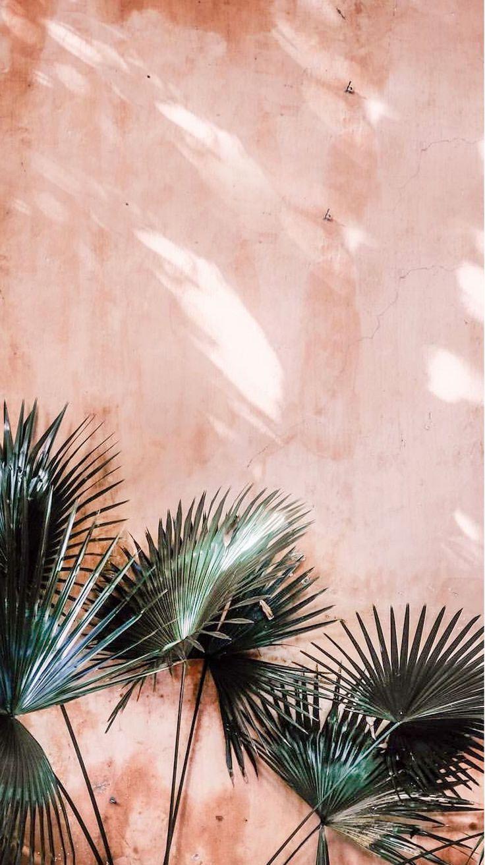 'MENORCA' – SPRING 2018 KINLY – #39MENORCA…