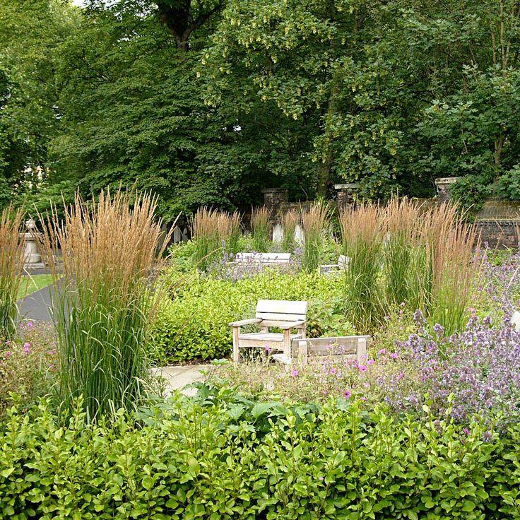 455 beste afbeeldingen van landscape plants - Eigentijdse landscaping ...