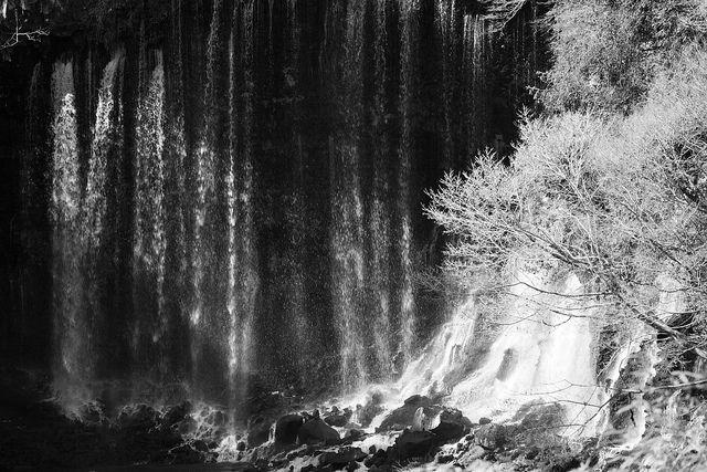 白糸の滝 by cate♪, via Flickr