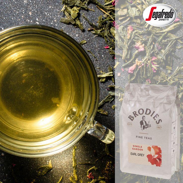 Brodies rozszerzyło paletę smaków herbat liściastych do 18 kompozycji smakowych,  dodatkowo wprowadzając nowe opakowanie deli bag, które pozwala liściom zachować swój aromat! #segafredo #herbata #tea #tealeaf #leaves #delibag #packaging #opakowanie #swiezosc