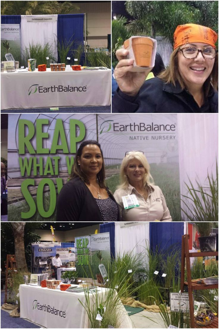 We participate in landscape and native nursery shows hosted by the Florida Nursery, Growers, and Landscape Association (FNGLA). Exchanging knowledge and growing our network is always a blast!