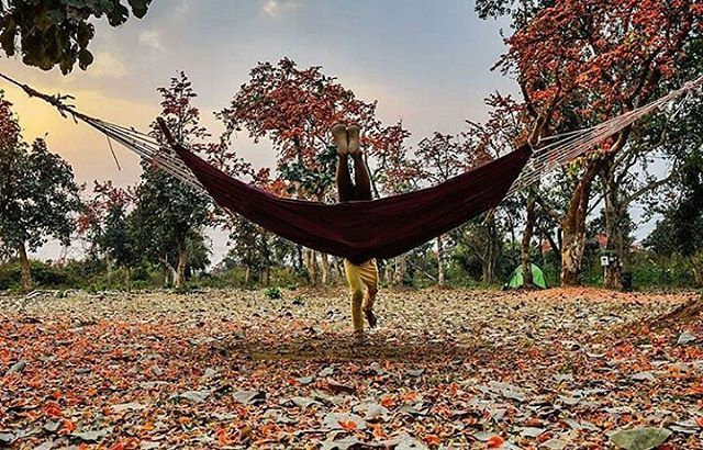 Today's top pick of @trellingkolkata . . Upside down 😛 Picture Courtesy :- @saumalyaghosh . Use #trellingkolkata to get featured!  Tryout Trell App to discover new things in the city and connect with a global community of explorers, travelers, photographers and foodies! Download it from trellapp.com