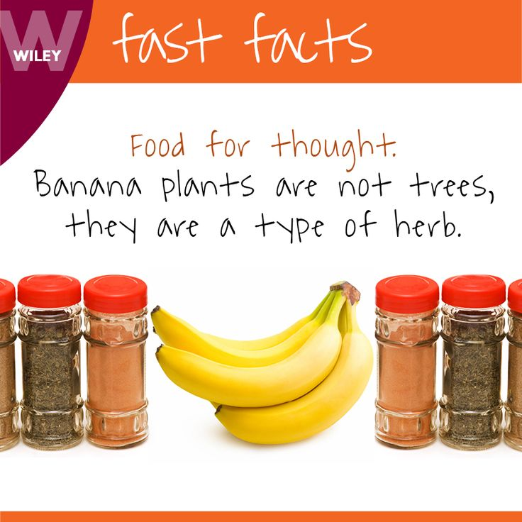 #FoodFact #Wiley #DidYouKnow #FastFact