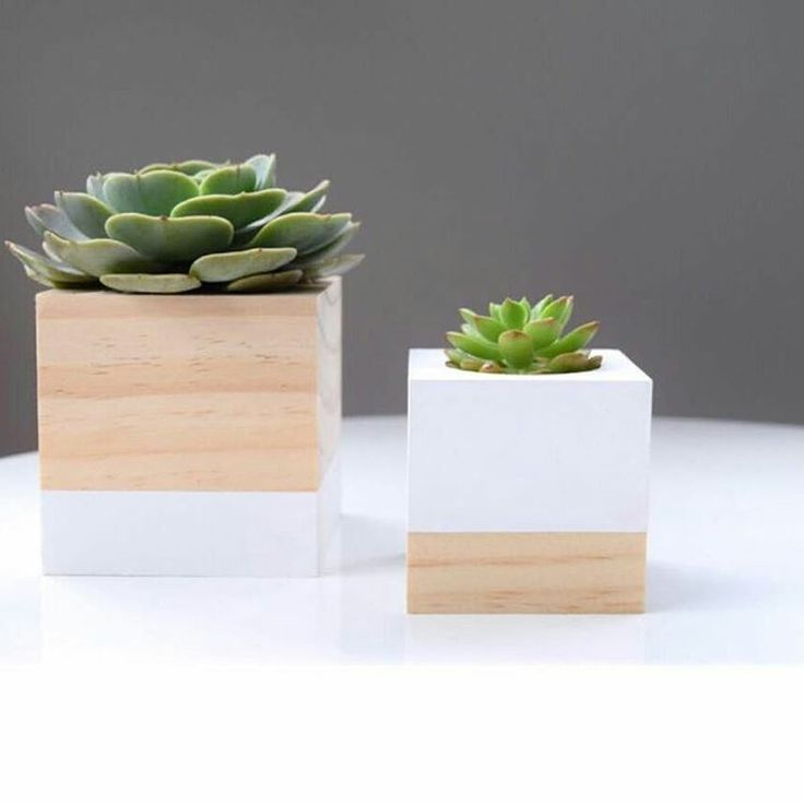 Our @timber.and.co scandi timber planters are now in stock! ▶▶▶ BUY now PAY later || no interest ever ◀◀◀ ⚫SHOP ONLINE⚫www.thesecretdoordecor.com⚫(link in bio)  #thesecretdoordecor #scandinaviandesign #interior #interiorstyling #decor #homestyle #home #boutiqueshopping #boutique #handmadewithlove #shophandmade #supportsmall #shopsmall #planter #candle