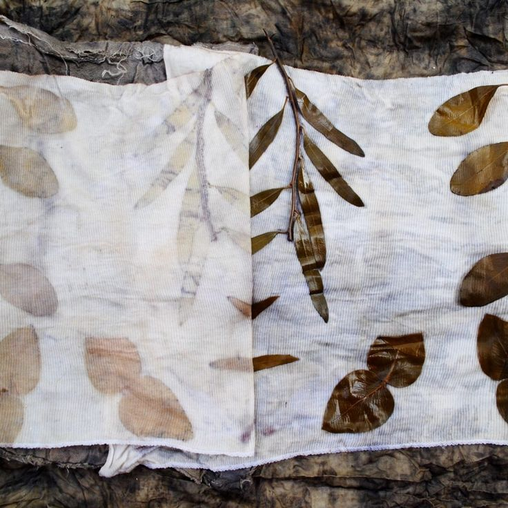 Eucalyptus eco-print on blood mordanted fabric