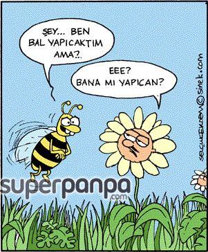 Arının İsteğini