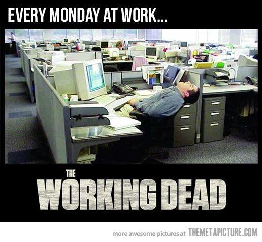 Every single Monday…