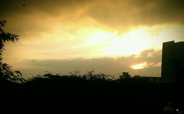 Golden sky...