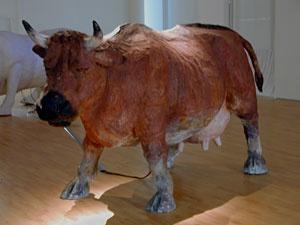 smak.be - Oleg Kulik vertolkt in zijn werk de frustraties van de kunstenaar die snakt naar communicatie met het Westen maar in plaats daarvan bekeken wordt als een exotisch dier.