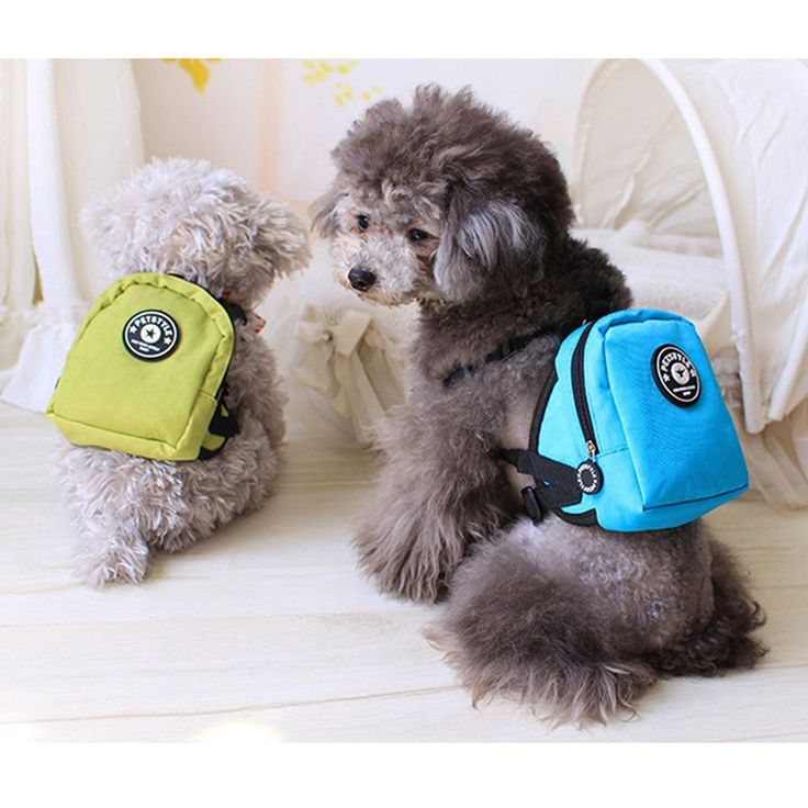 Amazon.com : Tiny Small Pet Dog Backpack Harness with leash Lead (Blue) : Pet…