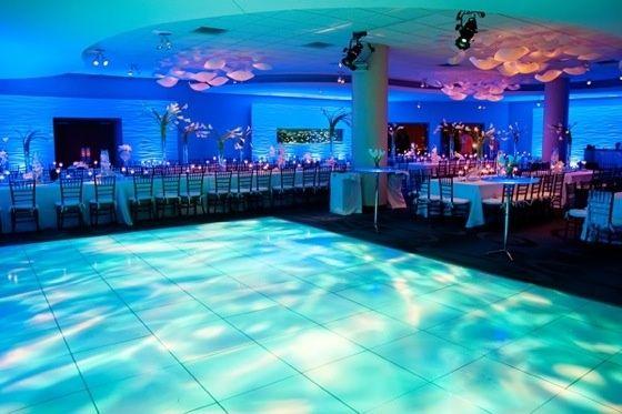 Florida Beach Wedding With Aquarium Reception: 17 Best Images About Newport Aquarium Riverside Room On