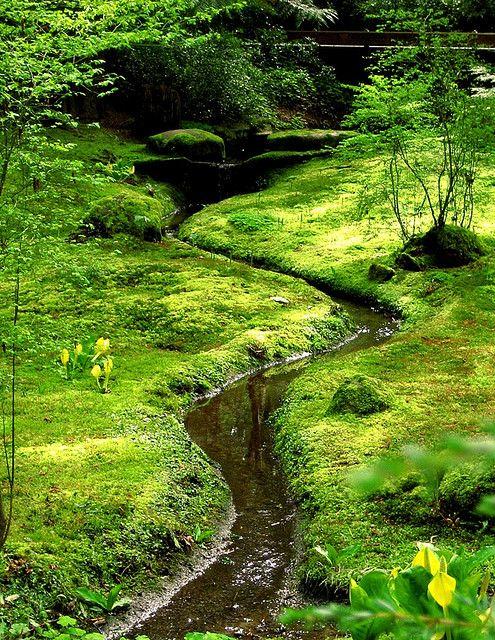 small stream through the moss garden at the Bloedel Reserve on Bainbridge Island, WA.  This area designed by Fujitaro Kubota.