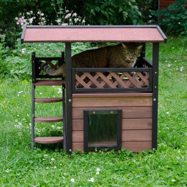 Luxury Outdoor Cat Shelter House Stairs Garden Patio