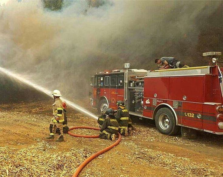 FEATURED POST   @worldwidefirefighters -  5 hectares of forest burned in Valdivia (Chile) .  ___Want to be featured? _____ Use #chiefmiller in your post ... http://ift.tt/2aftxS9 . CHECK OUT! Facebook- chiefmiller1 Periscope -chief_miller Tumblr- chief-miller Twitter - chief_miller YouTube- chief miller .  #firetruck #firedepartment #fireman #firefighters #ems #kcco  #brotherhood #firefighting #paramedic #firehouse #rescue #firedept  #theberry #feuerwehr #crossfit #112 #brandweer #pompier…