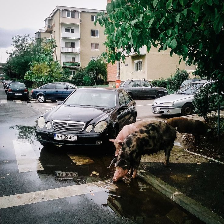 Fotografiile astea îți arată tot ce e frumos și trist în România