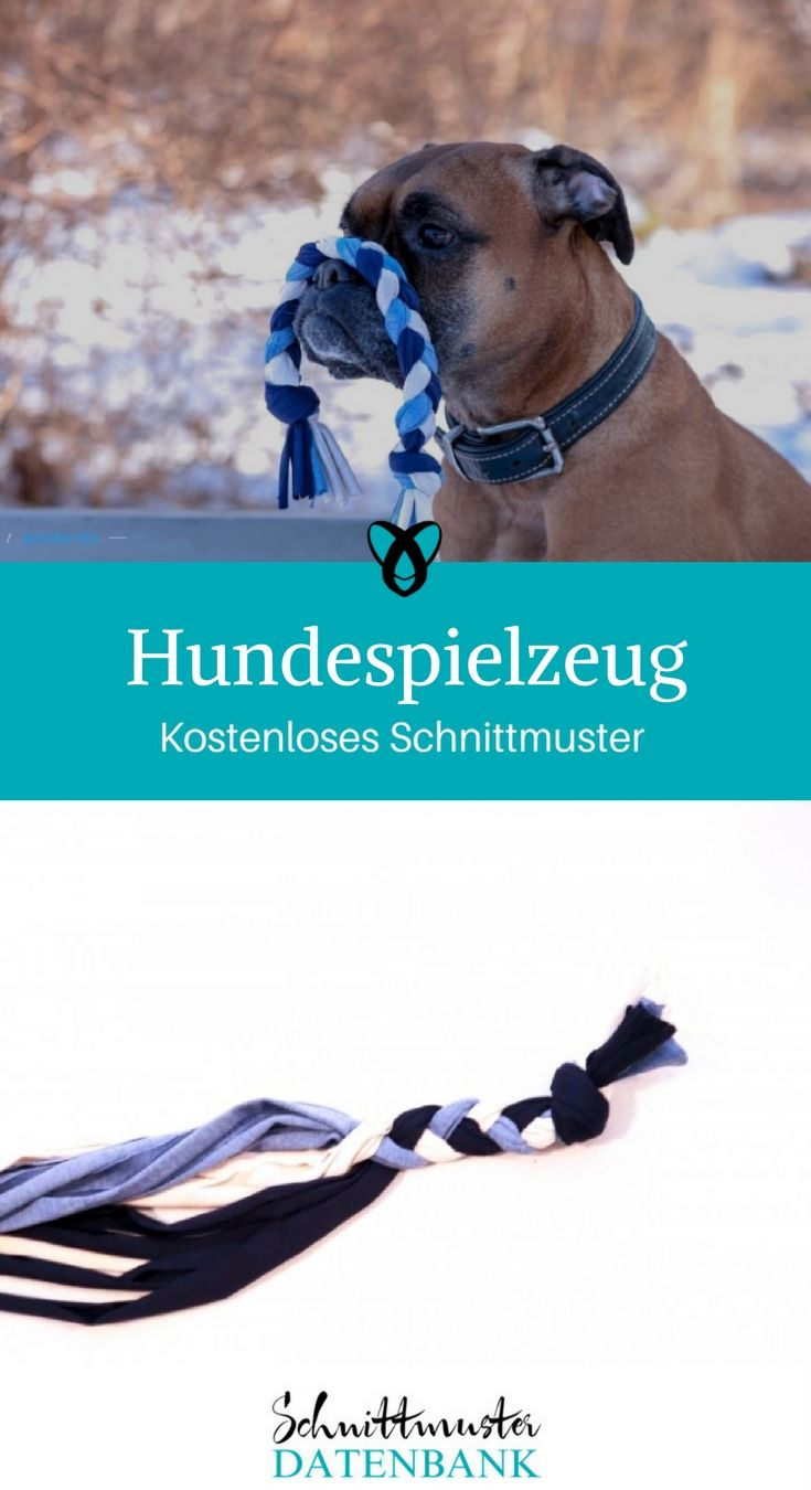 951 best || DIY für Hunde || images on Pinterest | Hunde, Haustiere ...