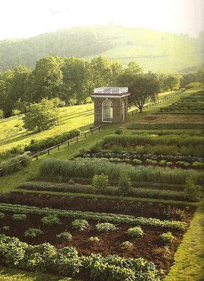 "Thomas Jefferson's vegetable garden... "" I have lived temperately, eating little animal"