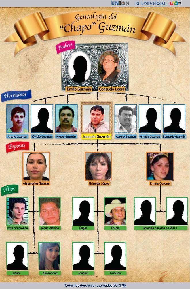 [Infografía]: Árbol genealógico de 'El Chapo' Guzmán | Jalisco móvil