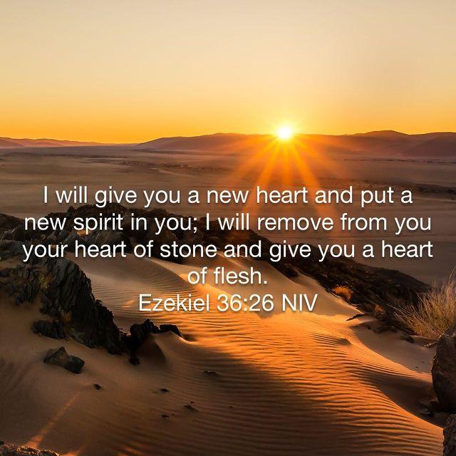 https://www.facebook.com/HarvestingHope new heart spirit