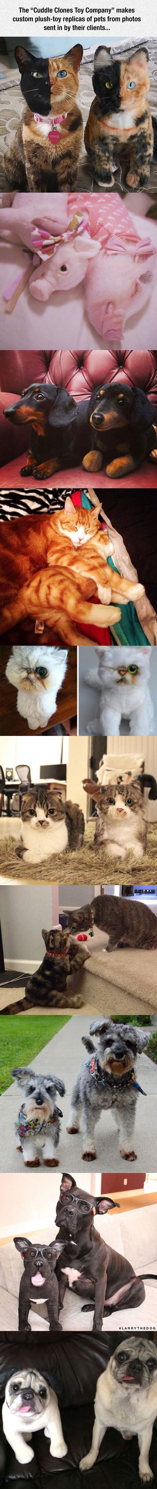 "The ""Cuddle Clones Toy Company"" create custom stuffed animals of your special pet and offer a variety of unique pet gifts, all you need to do is to send them one photos of your pets. Here is the link: Cuddle Clones"