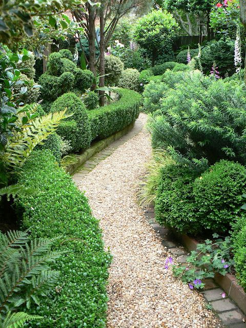 Boxwood/ pea gravel path. Loose design