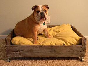 Caminha de cachorro - Faça em casa uma caminha para seu cachorro!