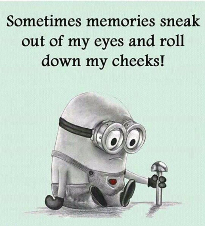 37 Cool Funny Quotes Life 6 Funny Minion Quotes Minion Quotes Funny Minion Memes