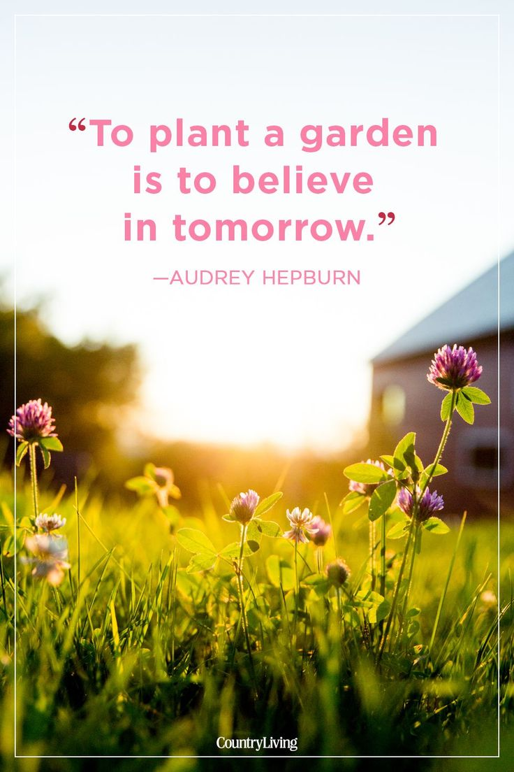 24 Absolutely Beautiful Quotes About Summer Get inspired to have the best summer yet with wise words from Audrey Hepburn.  <a class=